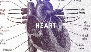 heart vr